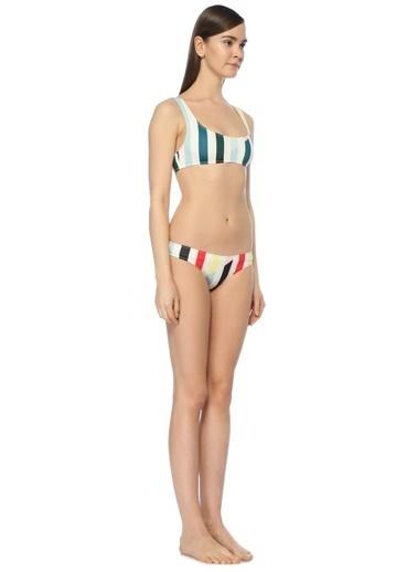 Solid & Stripe Bikini Üst Renkli